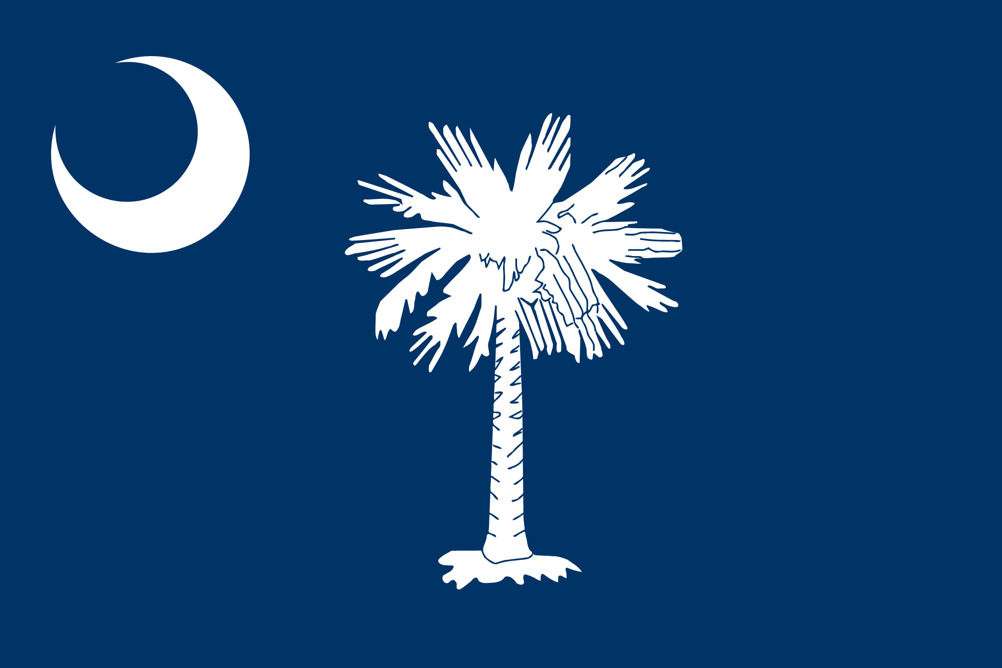South Carolina flag_114755