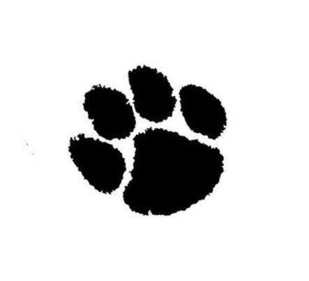 Panthers logo redo_139221
