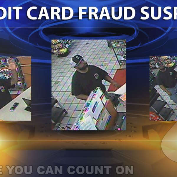 cc-fraud-suspect-montage_148913