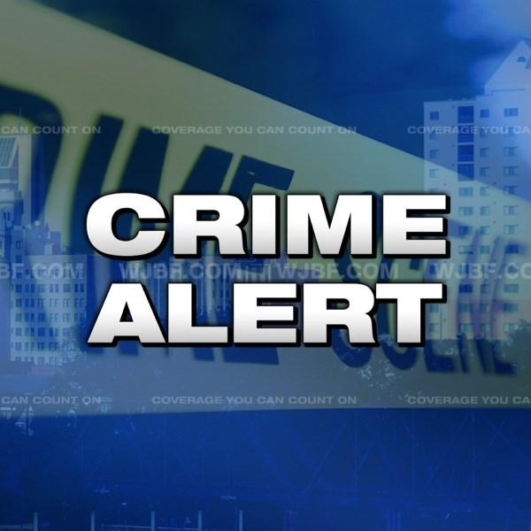 Crime-Alert_111705