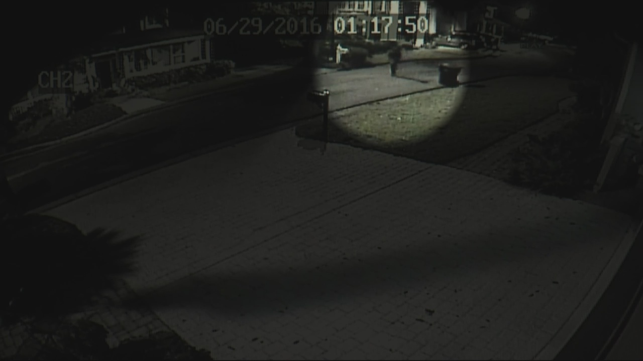 Summerville Break-ins_159339
