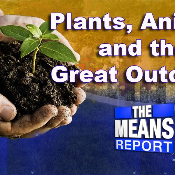 plantsanimalsandthegreatoutdoors_181939
