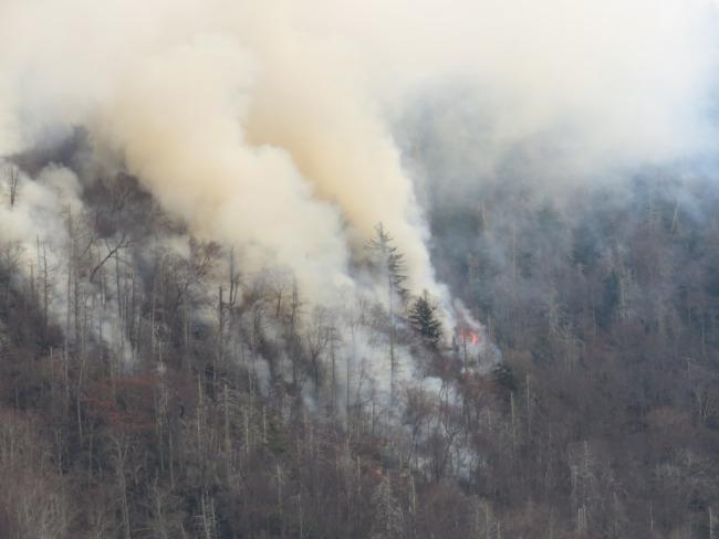 wildfires_199241
