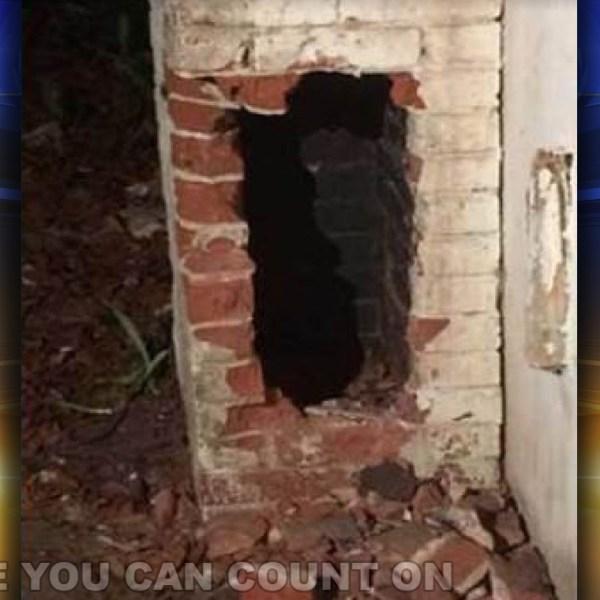 chimney-rescue_211174