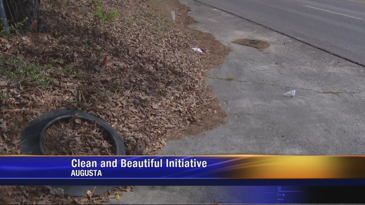 Clean and Beautiful plan faces opposition