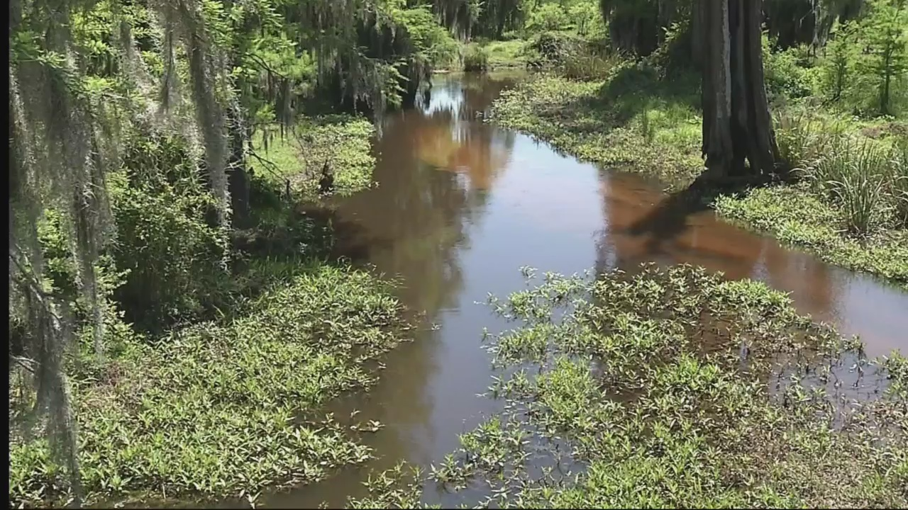 Earth Day CSRA set to bring Augusta close to nature