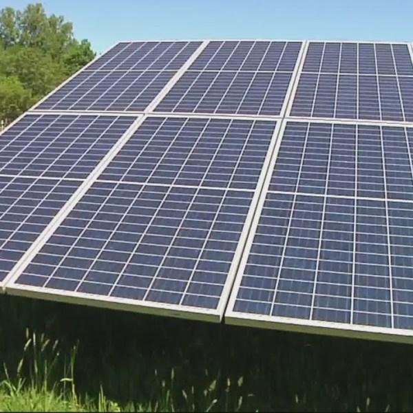solar panels_1530846763187.jpg.jpg