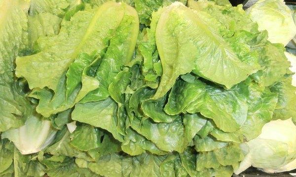 Stack_of_romaine_lettuce_heads_1527173017094_43356601_ver1.0_640_360_1543328427423.jpg