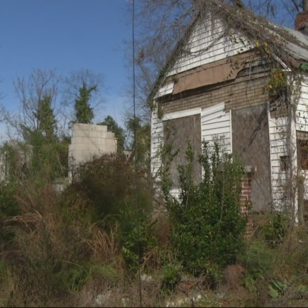Commissioners curious about blight battle plan