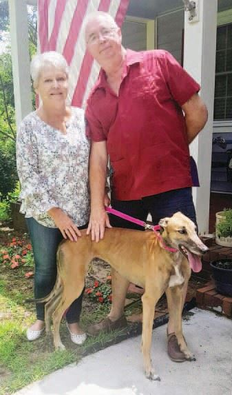 Kandace and Kenneth Dewberry with their Greyhound Stella_1547745863454.JPG.jpg