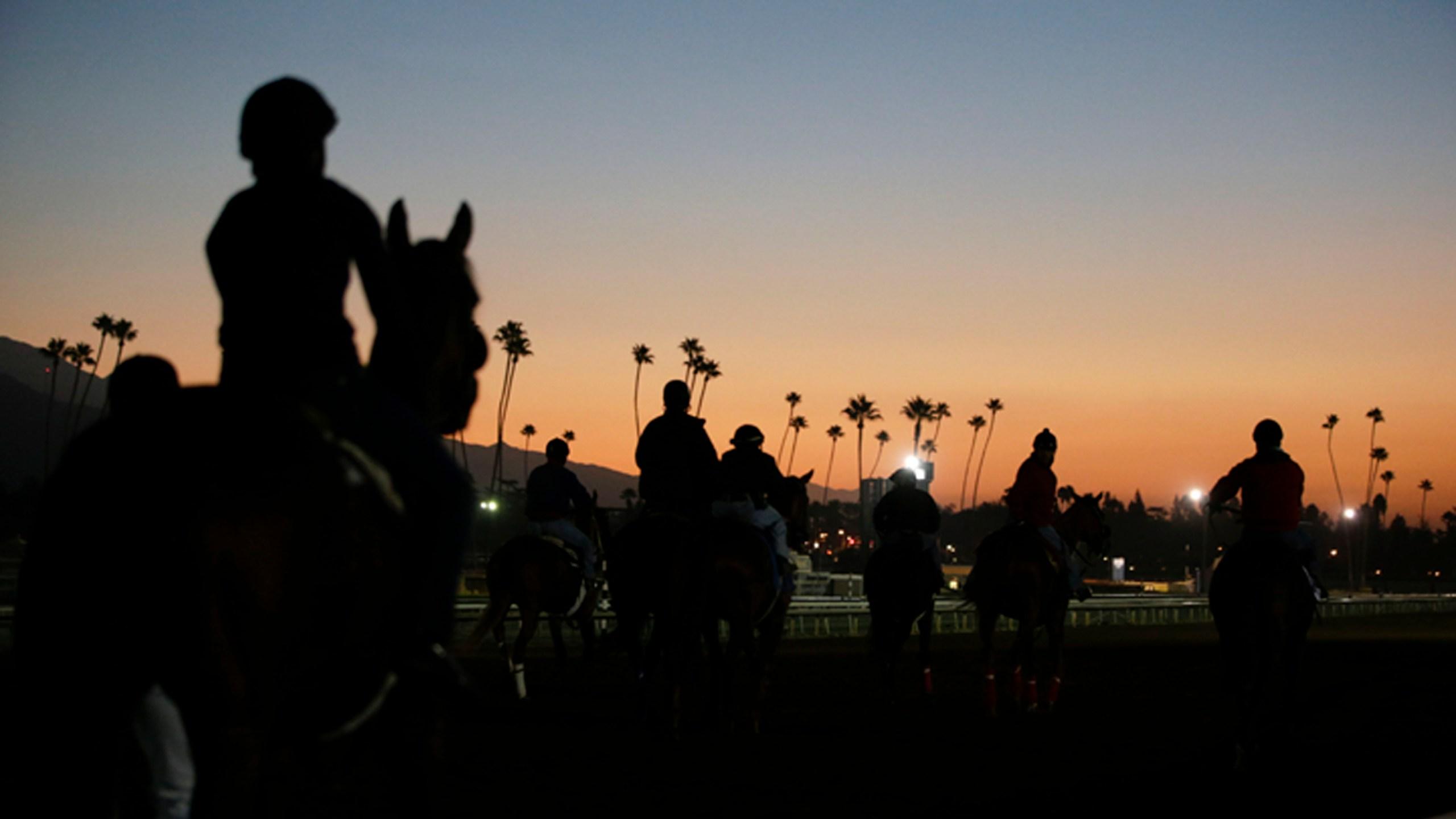 Santa_Anita_Fatalities_Horse_Racing_19699-159532.jpg01174557