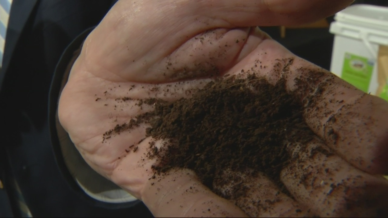 """""""Out There...Somewhere"""": Worms are number 2 at Garden Festival"""