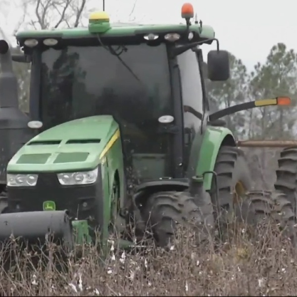 Georgia farmers affected by Hurricane Michael