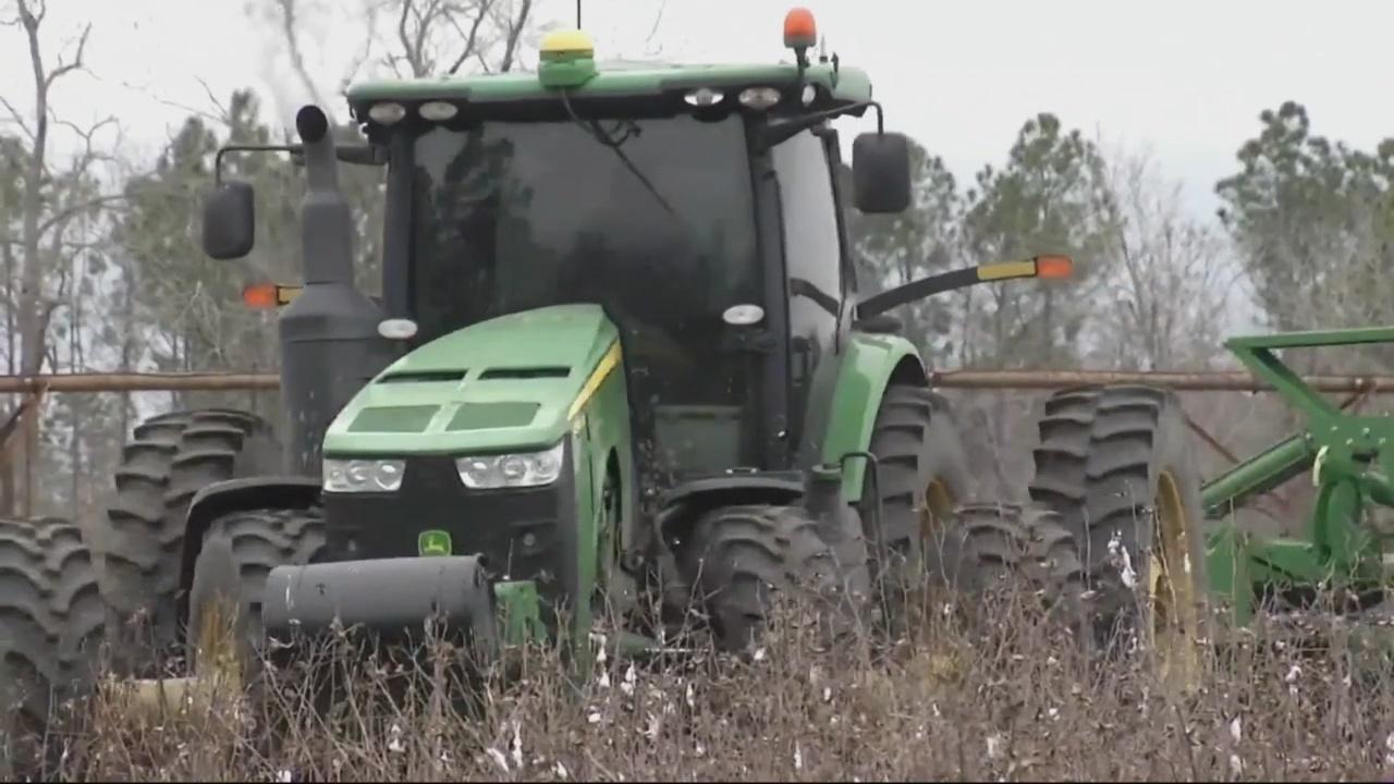 Georgia farmers affected by Hurricane Michael
